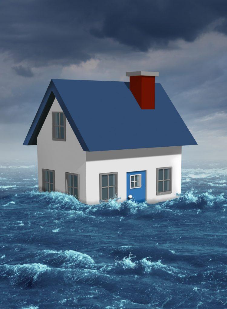 Flood Remediation